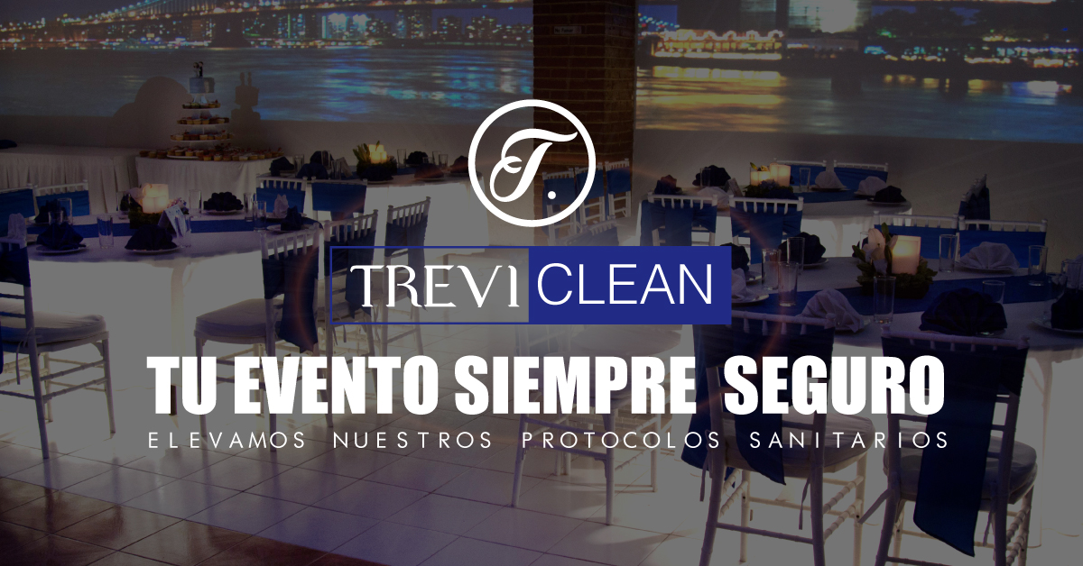 banner_treviclean
